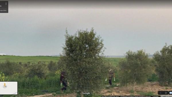 Diario da Gaza #10